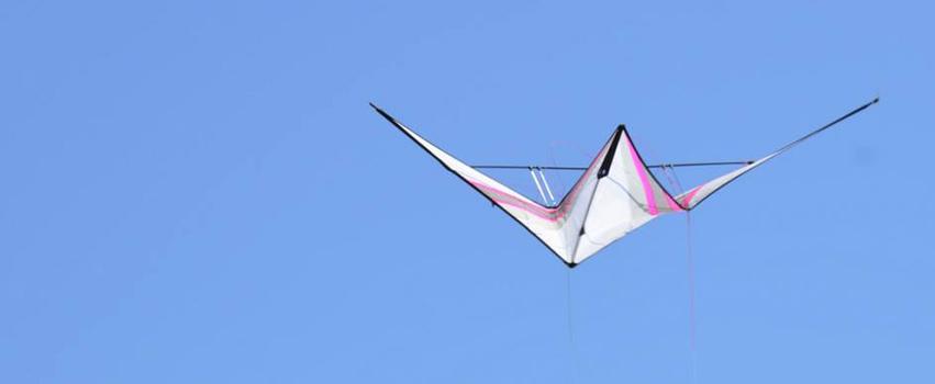 r-sky new trick kite turtle
